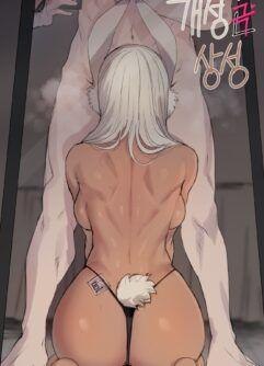 Heroína coelho Miruko